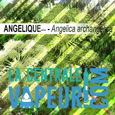 Angélique 30g - feuilles en vrac