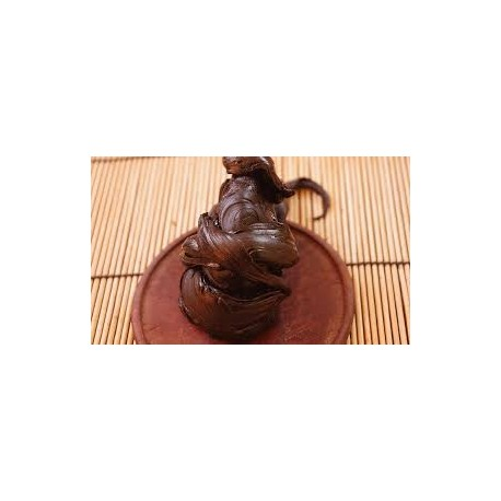 Griffe de chat résine X30 - 5 grammes - Uncaria Tomentosa