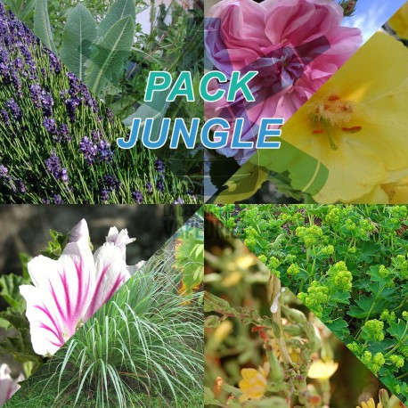 Jungle Pack